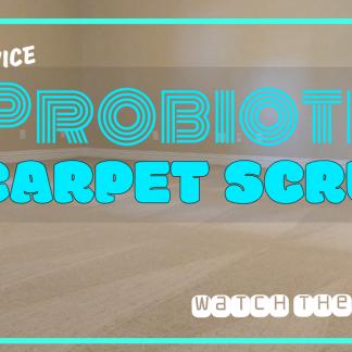 probiotic carpet scrub https://germzbegone.com